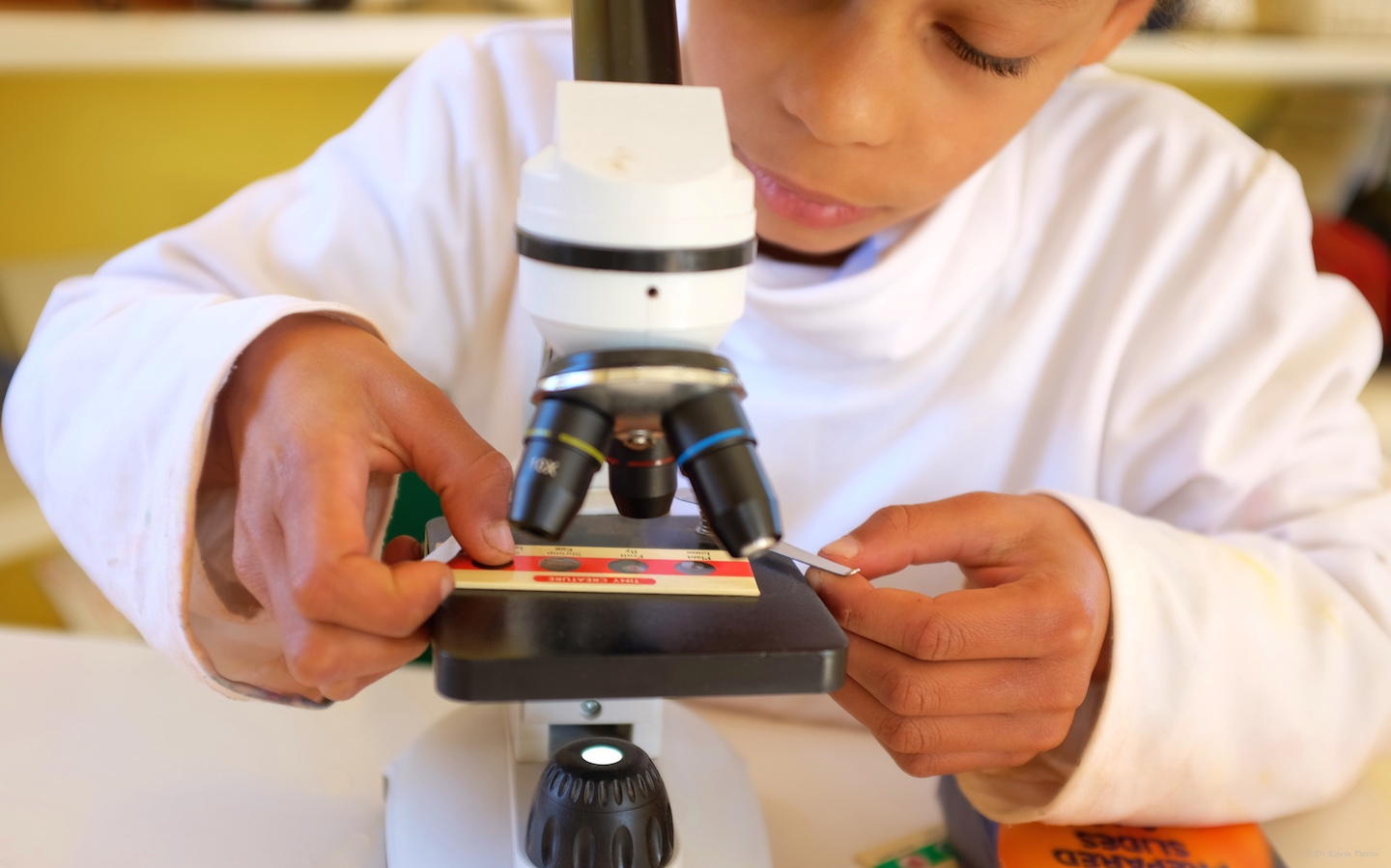 Seeing the microscopic world for the first time
