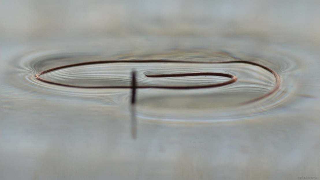 Surface tension in action at The Troutbeck School